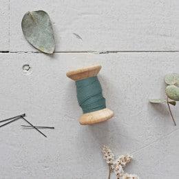BIAIS - Dobby Cactus